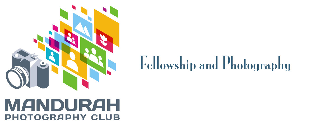 Logo fellowship1